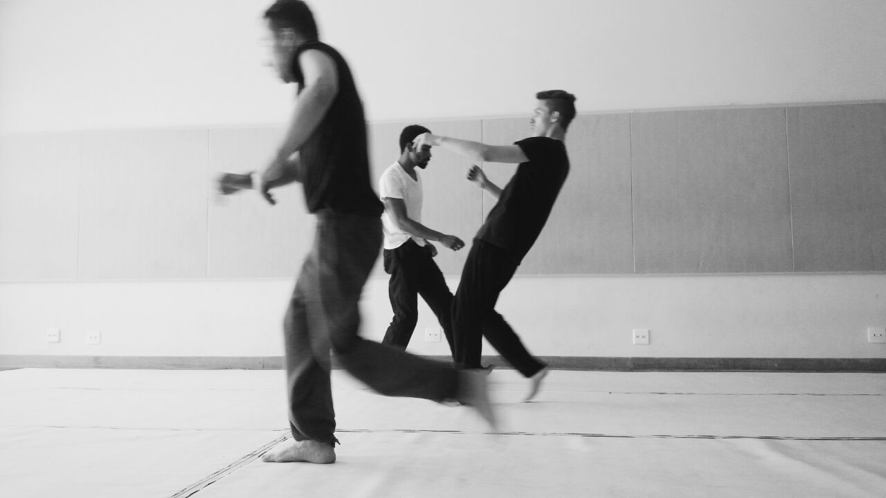 Luta Animal: composição a partir de elementos da Capoeira Angola e Contato Improvisação
